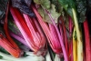 1365654_rhubarb