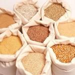 grainsbeforemilling-150x150